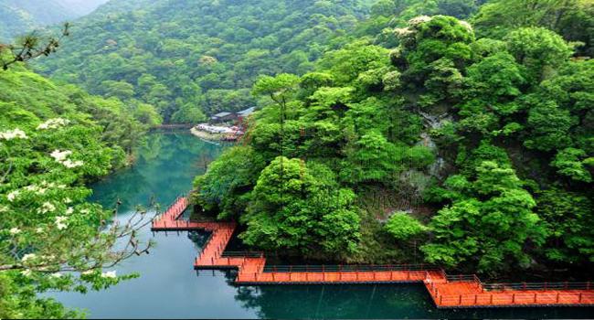 首页 自驾之旅                牯牛降风景区位于祁门与石台县交界处